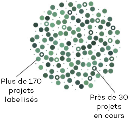 Infographie projets